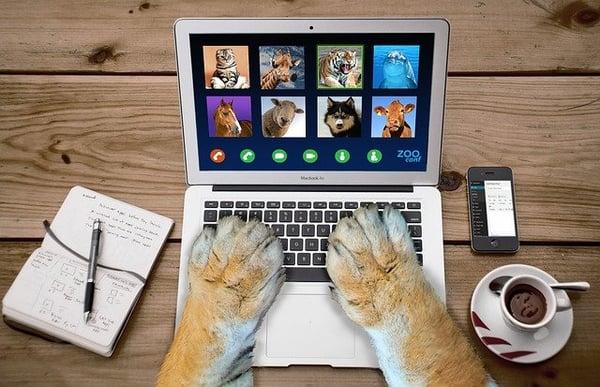 Come creare un webinar che spacca!